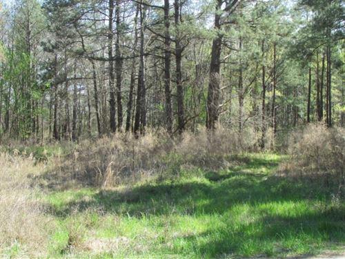 McKnight Road Tract : Lynchburg : Lee County : South Carolina