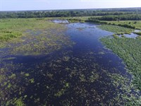 Hunting Sanctuary : Lake Creek : Delta County : Texas