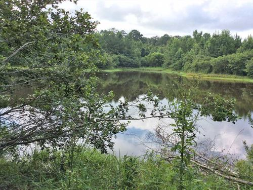 Provitt Road Tract : Grady : Crenshaw County : Alabama