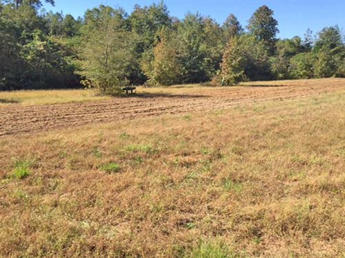 Kelley's Glenwood Rd Tract : Brantley : Crenshaw County : Alabama