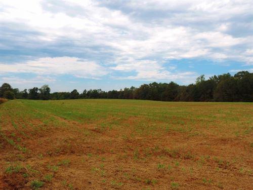 Home Site On Corner Lot : Elberton : Elbert County : Georgia