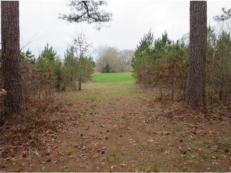 43.5 Acres In Hinds County : Raymond : Hinds County : Mississippi