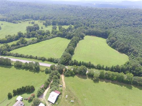 43+/- Acres - Pasture And Creek : Blountsville : Saint Clair County : Alabama