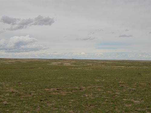 Ditson - Crp & Grassland : Lamar : Prowers County : Colorado