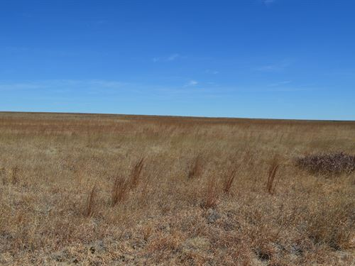 Prowers County Crp For Sale Wright : Holly : Prowers County : Colorado