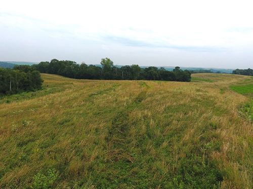 Investment & Recrecational 70 Acres : Boscobel : Grant County : Wisconsin