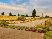 Ranch With Electricity In City : Deming : Luna County : New Mexico