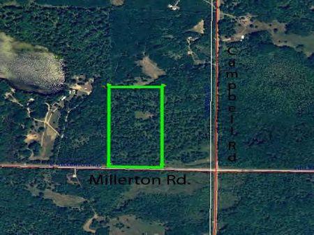 20 Acres Of Wonderful Hunting : Branch : Mason County : Michigan
