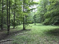 46 Acre Recreational Tract : Buffalo : Union County : South Carolina