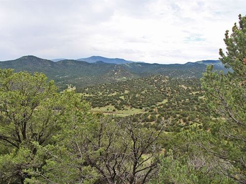 Auction - Co Rocky Mountain Land : Cañon City : Fremont County : Colorado