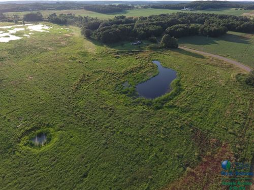25+/- Acres Buildsite And Waterfowl : Endeavor : Marquette County : Wisconsin