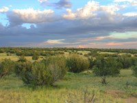 Secluded 37 Acre Northern Az Ranch : Saint Johns : Apache County : Arizona