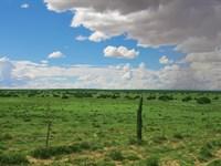 36 Acre Northern Az Sufficieny Land : Saint Johns : Apache County : Arizona