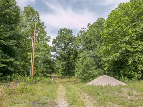 Carr Bailey Rd - 86 Acres : Millfield : Athens County : Ohio