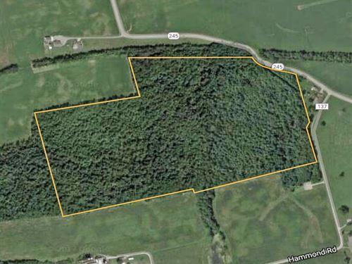 74 Acres Champaign County : Mingo : Champaign County : Ohio