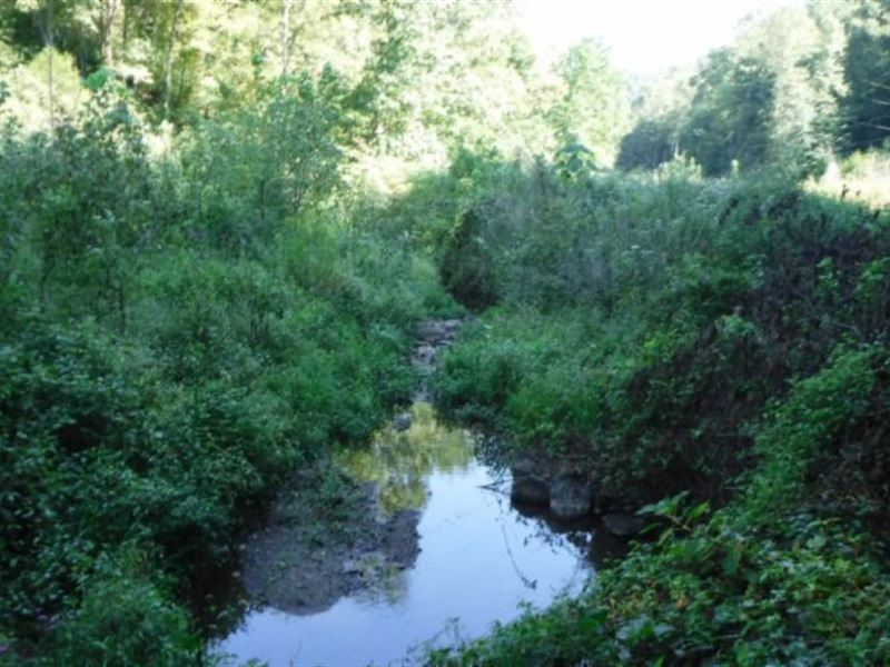 15.76 Ac S Fork Road, Whitleyville : Whitleyville : Jackson County : Tennessee