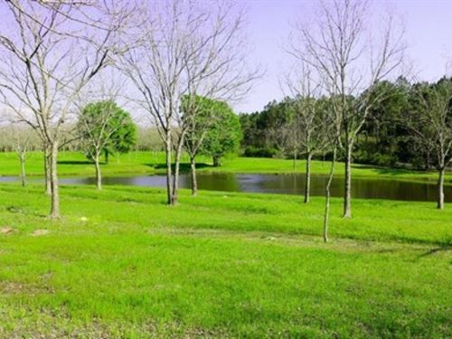 38.4 Acres In Pearl River : Poplarville : Pearl River County : Mississippi