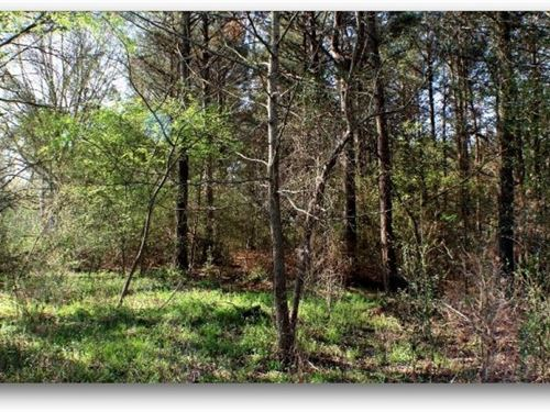 52 Acres In Scott County : Forest : Scott County : Mississippi
