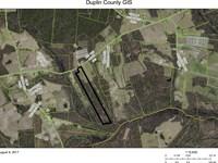 Just Reduced Over $10,000 : Magnolia : Duplin County : North Carolina