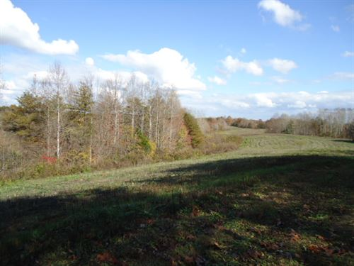125.36 Ac McCormick Ridge Road : Red Boiling Springs : Clay County : Tennessee