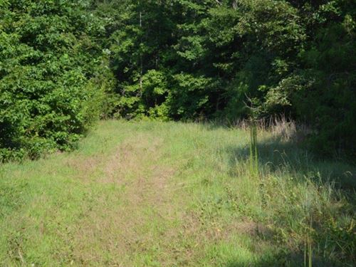 38.90 Acres Knighton Chapel Rd : Fountain Inn : Laurens County : South Carolina