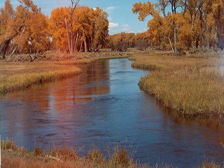 San Luis Valley 200 Acre Ranch : Monte Vista : Rio Grande County : Colorado