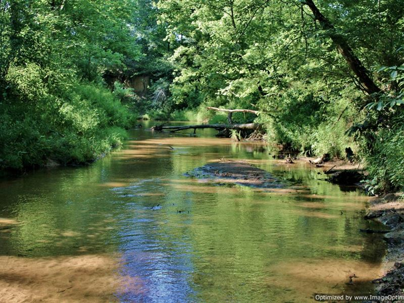 Recreational tract ranch for sale black hawk carroll for Ranches for sale in mississippi