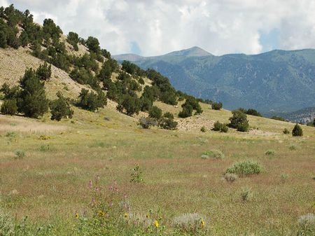 Kickback Ranch : Gardner : Huerfano County : Colorado