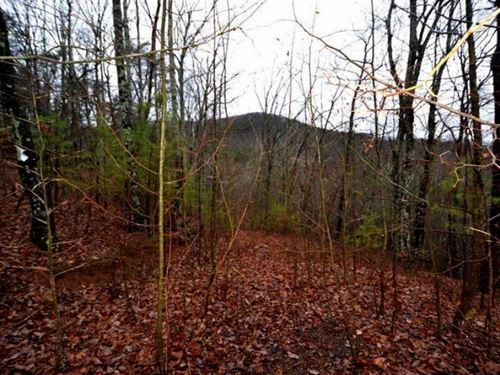 Georgia Mountain Land For Sale : Jasper : Pickens County : Georgia