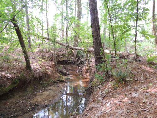299.06 Ac On Ga W Hwy 36 : Woodland : Talbot County : Georgia