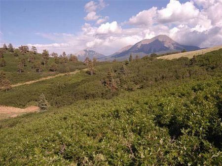 35 Acres @ Raspberry Mtn Ranch : La Veta : Huerfano County : Colorado