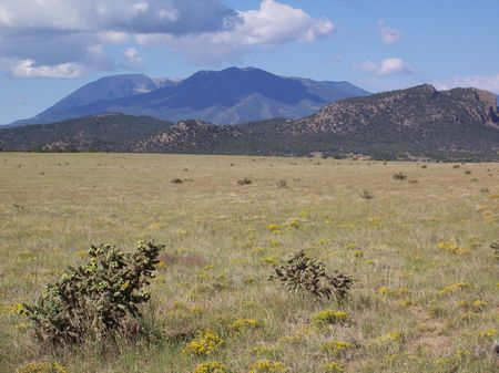 Majors Ranch 237 Acres : La Veta : Huerfano County : Colorado