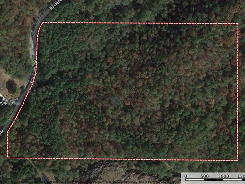 Reduced - Great Wooded 22+/- Acre : Trussville : Saint Clair County : Alabama