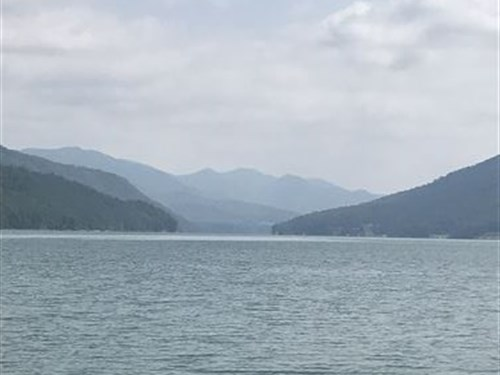 Watauga Lake Land For Sale : Butler : Carter County : Tennessee