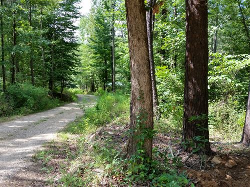 28+/- Ac On Drake Creek /Hardwoods : Ashland : Clay County : Alabama