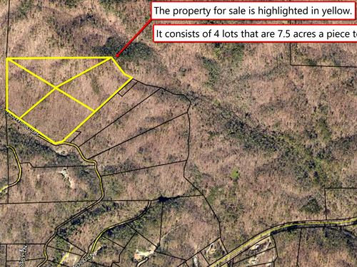 Crazy Deal On 30 Ac Lot Easy Acces : Ellijay : Gilmer County : Georgia