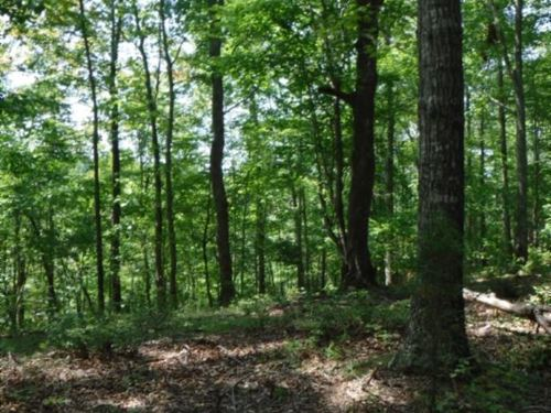 23.77Ac Ideal Recreational, Private : Hilham : Clay County : Tennessee