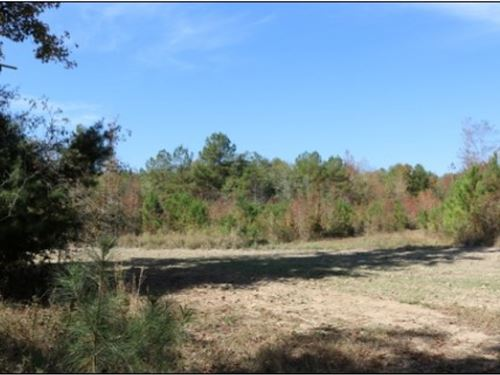 136 Acres In Lauderdale County : Meridian : Lauderdale County : Mississippi