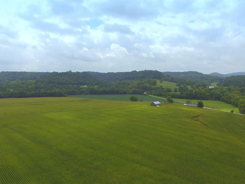 79 Acre Middle Tn Farm : Hampshire : Maury County : Tennessee