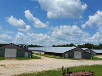 4 House Broiler Farm : Hodges : Franklin County : Alabama