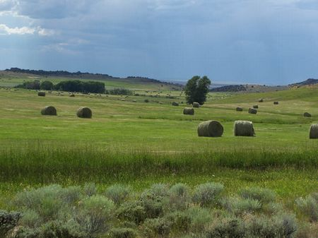 Wiant Ranch : Saratoga : Carbon County : Wyoming