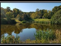 Beautiful 244 Ac W Ponds & Views : Kimbolton : Guernsey County : Ohio