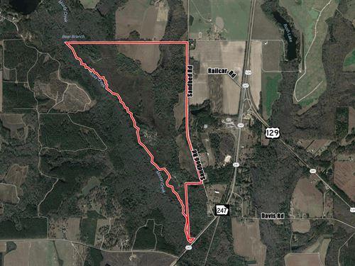 Great Recreational Or Investment : Kathleen : Houston County : Georgia