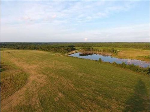 Reduced, 152 Acre Farm Land For : Baxley : Appling County : Georgia