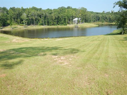 High Ridge Preserve : High Ridge : Bullock County : Alabama