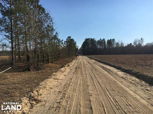 Loris Recreational Property : Loris : Horry County : South Carolina