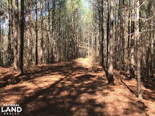 Blackwood Tract in Choctaw County : Chester : Choctaw County : Mississippi
