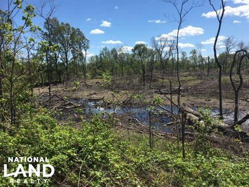 Yazoo Hunting Land : Yazoo City : Yazoo County : Mississippi