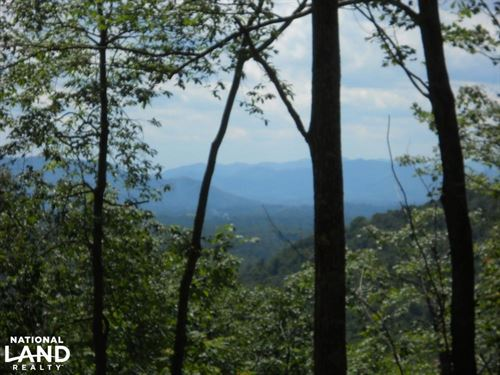 High Mountain Views And Hunting : Bakersville : Mitchell County : North Carolina