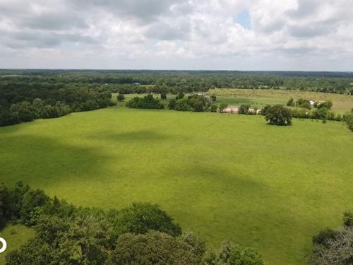 60 Acre Recreational/Ranch Acreage : Hockley : Waller County : Texas